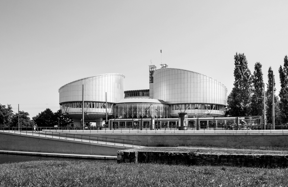 C. The European Court of Human Rights