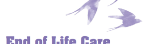 End of Life Care and Human Rights: A Practitioners' Guide