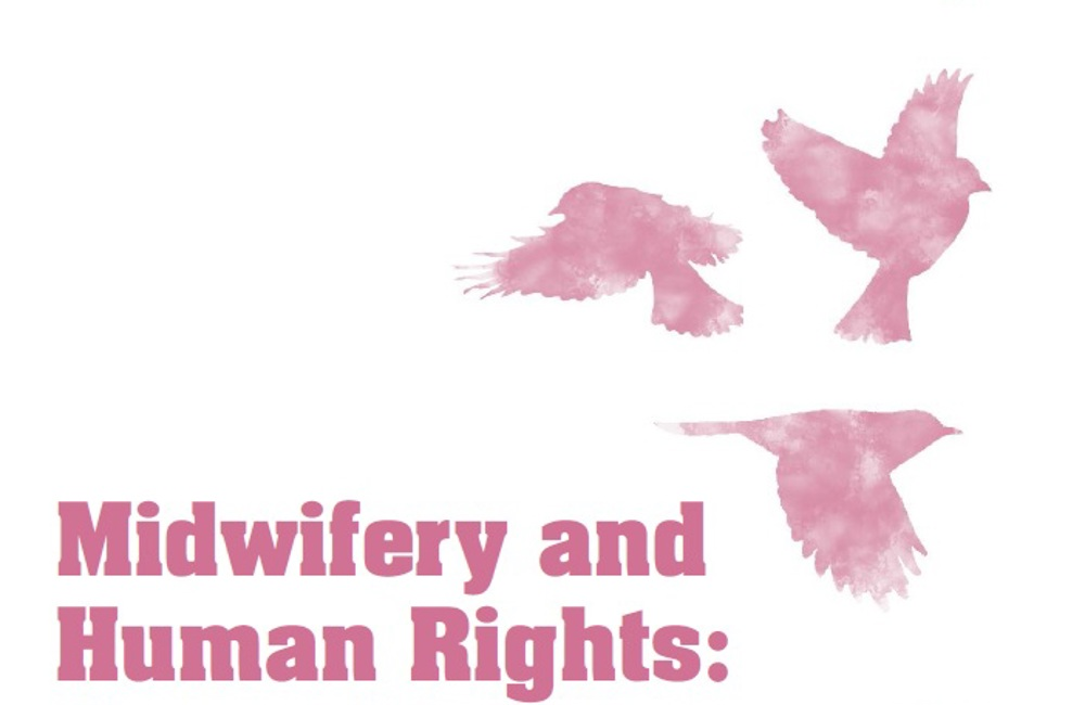 Midwifery and Human Rights: A Practitioner's Guide
